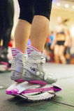 Kangoo Stock Photography