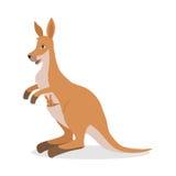 Kangourou avec Joey Baby dans la poche d'isolement sur le blanc Image stock