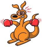 Kangourou de boxe Image stock