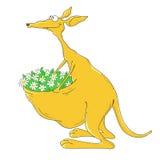 Kangourou de personnage de dessin animé sur un fond blanc Photo libre de droits
