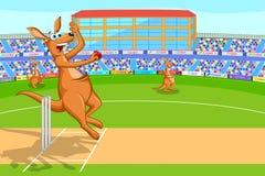 Kangourou jouant le cricket Images libres de droits