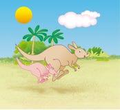 Kangroos hopping Stock Photo
