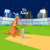 Kangur bawić się krykieta Obraz Stock
