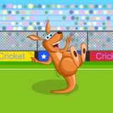 Kangur bawić się krykieta Zdjęcia Royalty Free