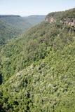 Kangur dolina obrazy royalty free
