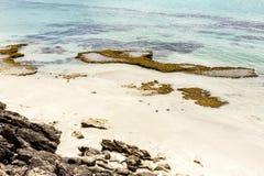 Kangur wyspy linia brzegowa, Południowy Australia zdjęcie stock
