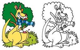 Kangur z błękitny szalika KOLOREM i BW Zdjęcie Stock