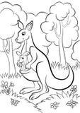 Kangur z dzieckiem Obraz Royalty Free