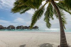 Kani Island Beautiful Island, de Maldiven Jun 2016 Stock Afbeeldingen