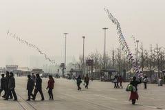Kani latanie przy olimpijskim parkiem Fotografia Royalty Free