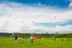 Kania festiwal Zdjęcia Stock