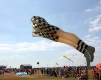 Kania festiwal Obraz Royalty Free