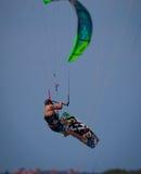 Kania intern w Floryda lata dramatycznie przez nieba zdjęcie royalty free