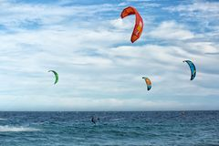 Kania interny na morzu Zdjęcie Royalty Free