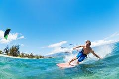 Kania surfing Obrazy Royalty Free