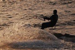 Kania surfing Fotografia Royalty Free