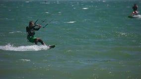 Kania surfingowiec zdjęcie wideo