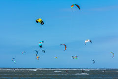 Kania surfingowowie Obrazy Royalty Free