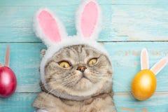 Kanin är ett trick med öron Påskägg med kulöra ägg arkivfoto