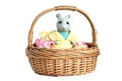 Kanin i en korg Arkivbild