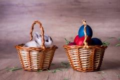 Kanin i en korg lyckliga easter Fotografering för Bildbyråer