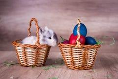 Kanin i en korg, på en träretro seende bakgrund Arkivbild