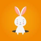 Kanin i hål på orange bakgrund, vektorillustration Royaltyfria Foton