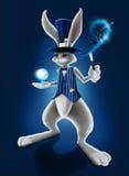 Kanin i hatten Fotografering för Bildbyråer