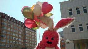 Kanin med baloonsfödelsedag arkivfilmer