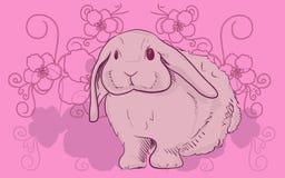 Kanin med blommafilialen Arkivbild