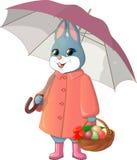 Kanin med paraplyet Arkivbild