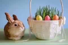 Kanin- och påskägg i korgen arkivfoto