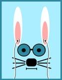 Kanin som ha på sig exponeringsglas och hörlurar Arkivbild