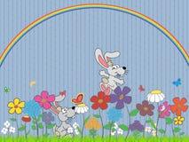 kaninblommaäng Fotografering för Bildbyråer