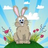 Kaninchen auf der Blumenwiese Lizenzfreies Stockfoto