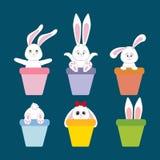 Kaninchen Bunny Icon Stockbild