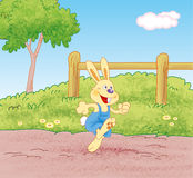 Kaninchen, das auf dem Weg läuft Stockfotos