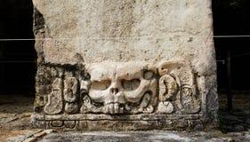 Kaninchen durch Maya an archäologischer Fundstätte Palenque lizenzfreies stockfoto