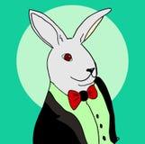 Kaninchen in einem Smoking Stockfotos