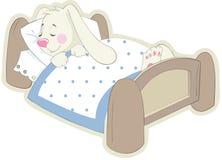 Kaninchen im Bett Stockfotos