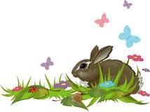 Kaninchen im Gras Stockfotografie