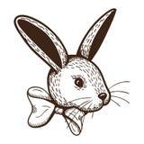 Kaninchen mit Bogen Stockfoto