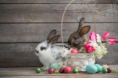 Kaninchen mit Frühlingsblumen und Ostereiern Lizenzfreies Stockfoto