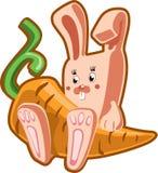 Kaninchen mit Karotte Stockfotos