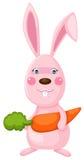 Kaninchen mit Korb Lizenzfreie Stockfotos