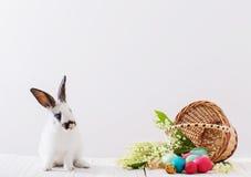 Kaninchen mit Ostereiern Stockfotografie