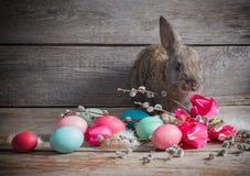 Kaninchen mit Ostereiern Stockfotos
