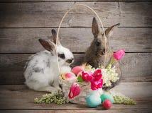 Kaninchen mit Ostereiern Lizenzfreie Stockfotografie