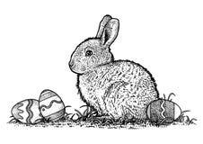 Kaninchen mit Ostereiillustration, Zeichnung, Stich, Linie Kunst Stockbilder