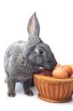 Kaninchen und Korb mit Eiern Lizenzfreie Stockfotografie